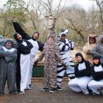 #7. The Cast of Madagascar--A Musical Adventure