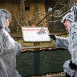 #9. L to R: Jenn Harris and Chris Roebuck learn about Lemurs at the Jackson Zoological Park