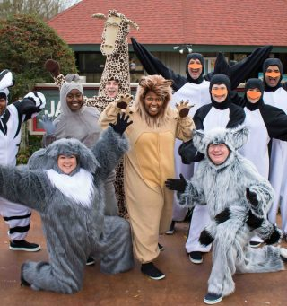 #1. The Cast of Madagascar--A Musical Adventure: L to R: Christan McLaurine as Marty the Zebra, Jenn Harris as Maurice the Lemur, LaSharron Purvis as Gloria the Hippo, Jake Bell as Melman the Giraffe, Sharon Miles as Alex the Lion, Chris Roebuck as King Julien. Penguins (back L to R) Josh Harris, Cameron Pitre (front L to R) Ben Sanders and Chesney Mitchell