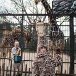 #2. Jake Bell as Melman the Giraffe