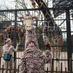 #3. Jake Bell as Melman the Giraffe