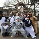 #4. The Cast of Madagascar--A Musical Adventure: L to R: Josh Harris as Penguin, Jenn Harris as Maurice the Lemur, Christan McLaurine as Marty the Zebra, Chris Roebuck as King Julien, LaSharron Purvis as Gloria the Hippo, Jake Bell as Melman the Giraffe, Ben Sanders as Penguin, Cameron Pitre as Penguin, Chesney Mitchell as Penguin, and Sharon Miles as Alex the Lion